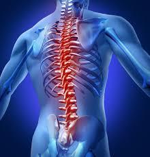index2 min - Back Pain